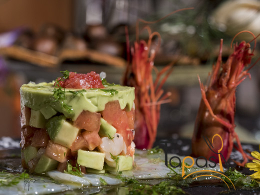 timbal aguacate